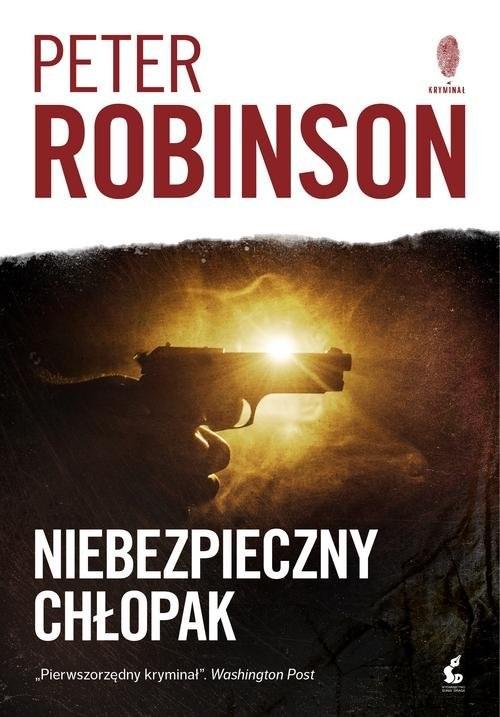 okładka Niebezpieczny chłopak, Książka | Robinson Peter