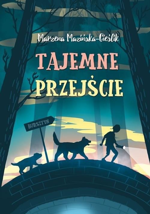 okładka Tajemne przejście, Książka | Mazińska Marzena Cieślik