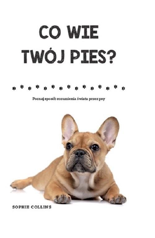 okładka Co wie Twój pies Poznaj sposób rozumienia świata przez psy, Książka | Collins Sophie
