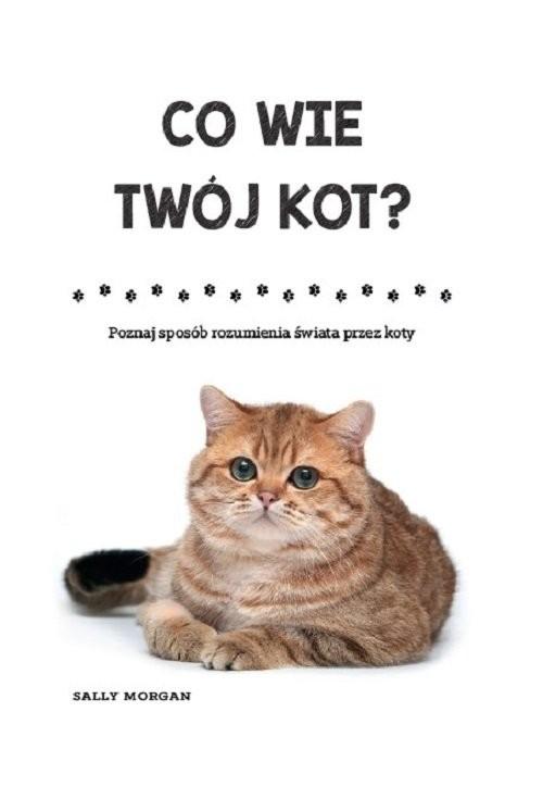okładka Co wie Twój kot Poznaj sposób rozumienia świata przez koty, Książka   Morgan Sally