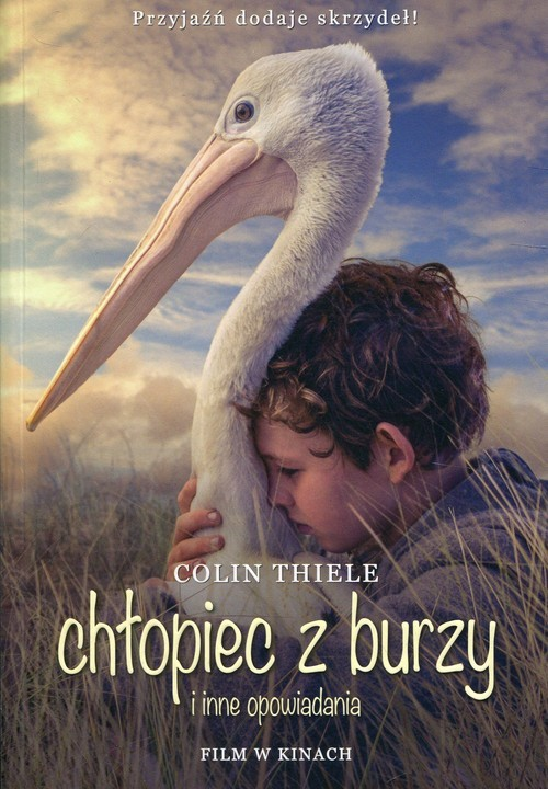 okładka Chłopiec z burzy i inne opowiadania wydanie filmowe, Książka | Thiele Colin