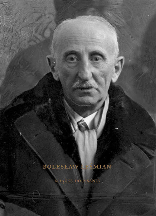 okładka Bolesław Leśmian Książka do pisania, Książka |