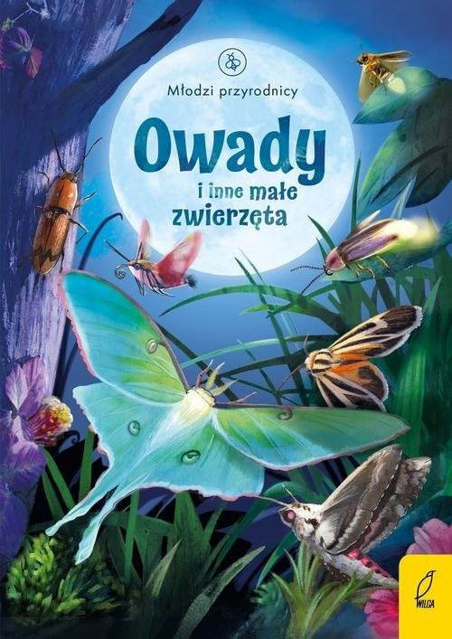 okładka Młodzi przyrodnicy Owady i inne małe zwierzęta, Książka | Bone Emily