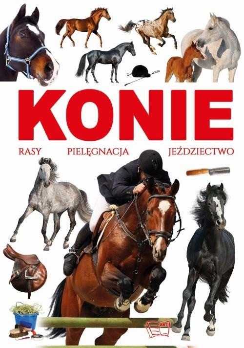 okładka Konie rasy pielęgnacja jeździectwo, Książka | Werner Joanna