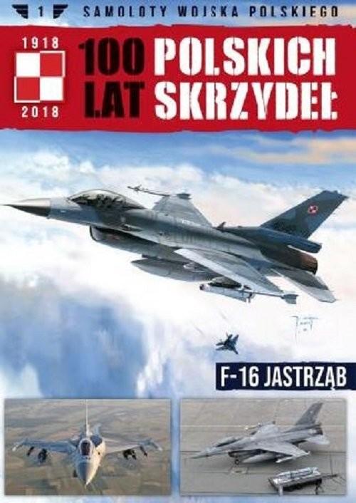 okładka Samoloty Wojska Polskiego 100 lat polskich skrzydeł Tom 1 F-16 Jastrząb, Książka |