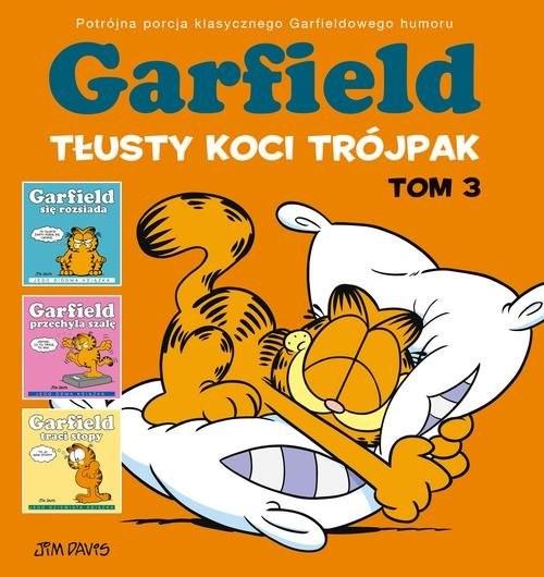 okładka Garfield Tłusty koci trójpak Tom 3, Książka | Davis Jim