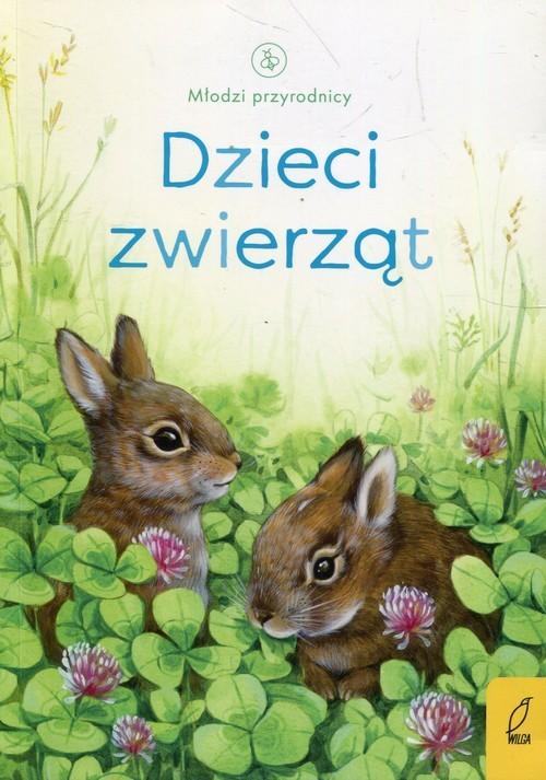okładka Młodzi przyrodnicy Dzieci zwierząt, Książka | Bone Emily