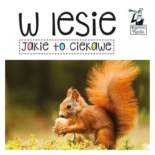 okładka Kapitan Nauka Jakie to ciekawe W lesie, Książka | Opracowanie zbiorowe