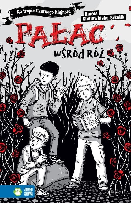 okładka Na tropie Czarnego Klejnotu Pałac wśród róż, Książka | Cholewińska-Szkolik Aniela