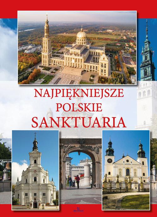 okładka Najpiękniejsze polskie sanktuaria, Książka | Krzyżanowski Teofil