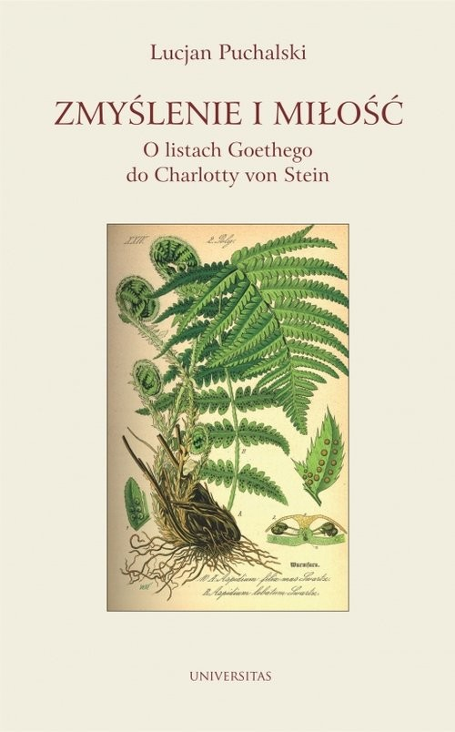 okładka Zmyślenie i miłość O listach Goethego do Charlotty von Stein, Książka | Puchalski Lucjan
