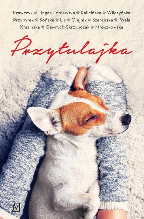 okładka Przytulajka - pocket, Książka | Krawczyk Agnieszka, Lingas-Łoniewsk Agnieszka