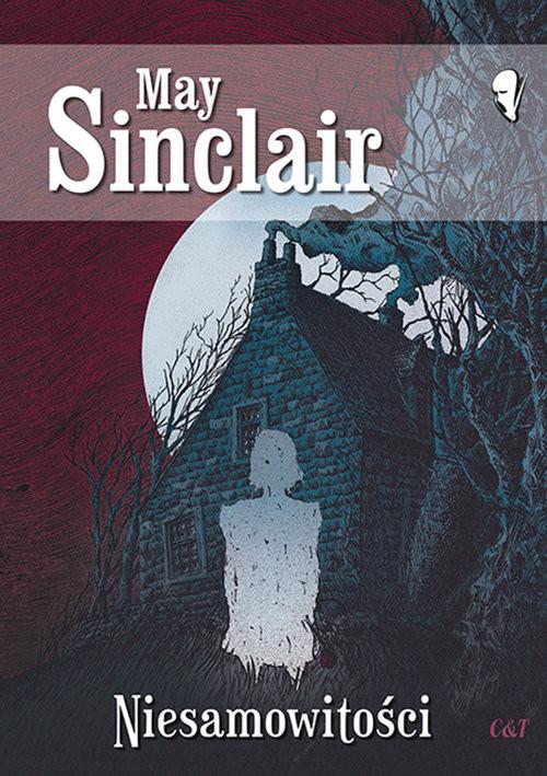 okładka Niesamowitości, Książka   Sinclair May