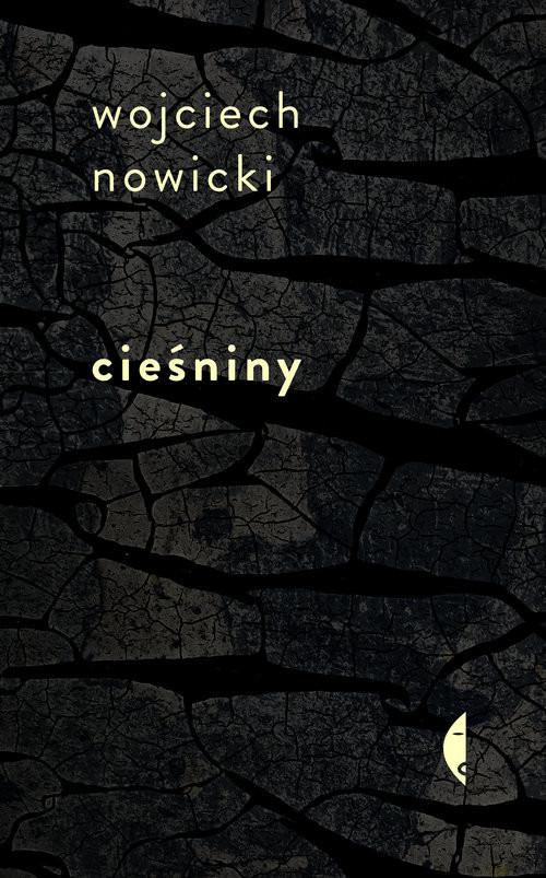 okładka Cieśniny, Książka | Nowicki Wojciech