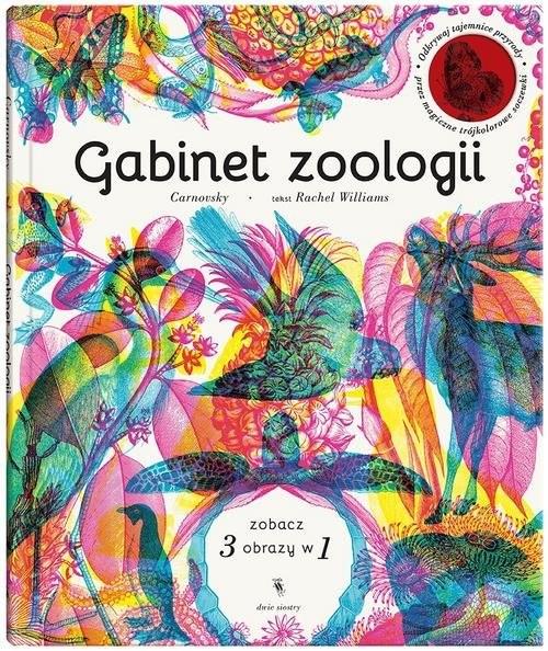 okładka Gabinet anatomii, Książka | Williams Rachel