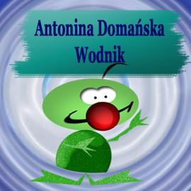 okładka Wodnikaudiobook | MP3 | Domańska Antonina