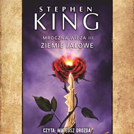 okładka Mroczna Wieża. Tom 3. Ziemie jałowe, Audiobook | King Stephen