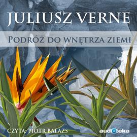 okładka Podróż do wnętrza Ziemi, Audiobook | Juliusz Verne