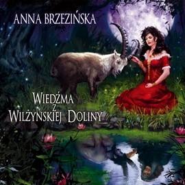 okładka Wiedźma z Wilżyńskiej Dolinyaudiobook | MP3 | Brzezińska Anna