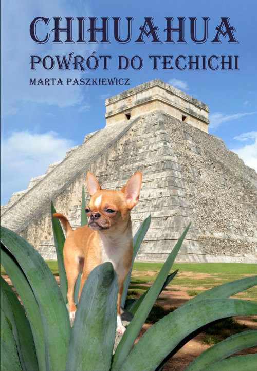 okładka Chihuahua powrót do techichi, Książka | Marta  Paszkiewicz