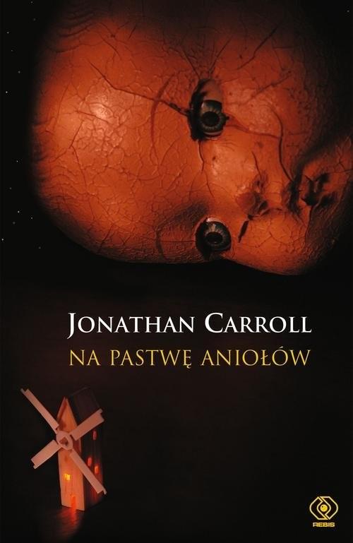 okładka Na pastwę aniołów, Książka | Jonathan Carroll