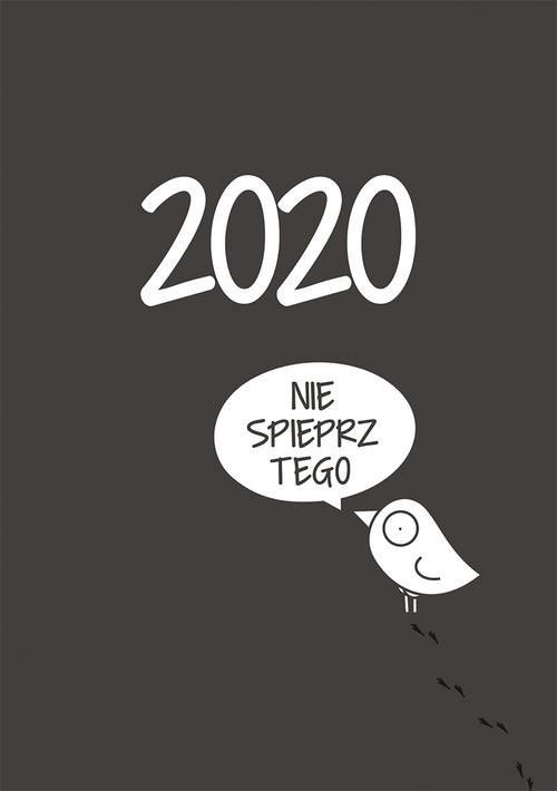 okładka Kalendarz 2020 Ptaszek Staszek, Książka | Staszek Ptaszek