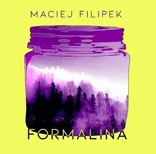 okładka Formalina / Instytut Literatury, Książka | Filipek Maciej