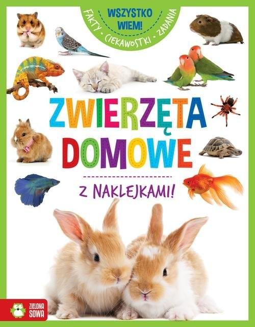okładka Wszystko wiem! Zwierzęta domowe, Książka |