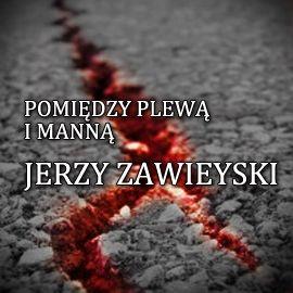 okładka Pomiędzy plewą i manną, Audiobook   Zawieyski Jerzy