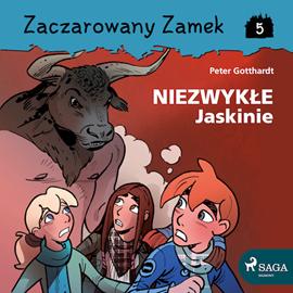 okładka Zaczarowany Zamek 5 - Niezwykłe Jaskinie, Audiobook   Gotthardt Peter