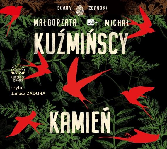 okładka Kamieńaudiobook | MP3 | Małgorzata Kuźmińska, Michał Kuźmiński