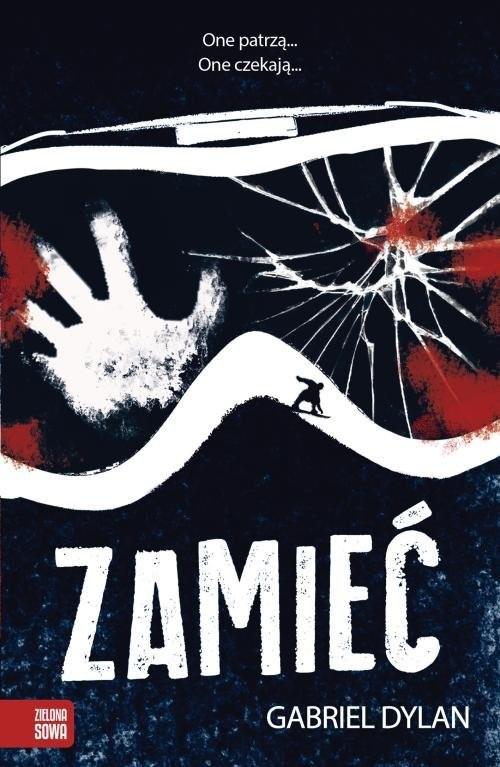 okładka Zamieć, Książka | Dylan Gabriel