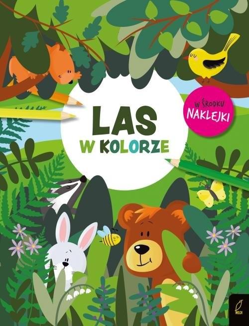 okładka W kolorze Las, Książka |