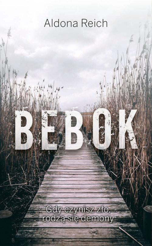 okładka Bebok, Książka | Reich Aldona