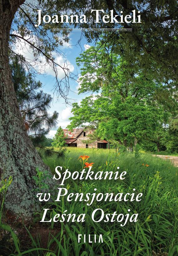okładka Spotkanie w Pensjonacie Leśna Ostoja, Ebook | Tekieli Joanna
