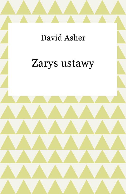 okładka Zarys ustawyebook | epub, mobi | David Asher