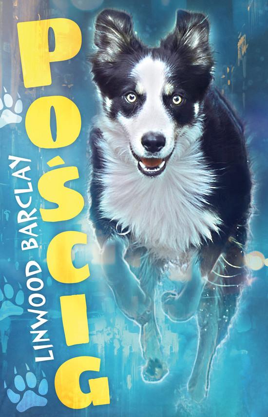 okładka Pościgebook | epub, mobi | Linwood Barclay