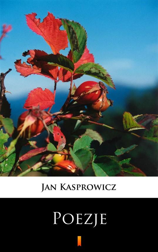 okładka Poezje. Wybórebook | epub, mobi | Jan Kasprowicz