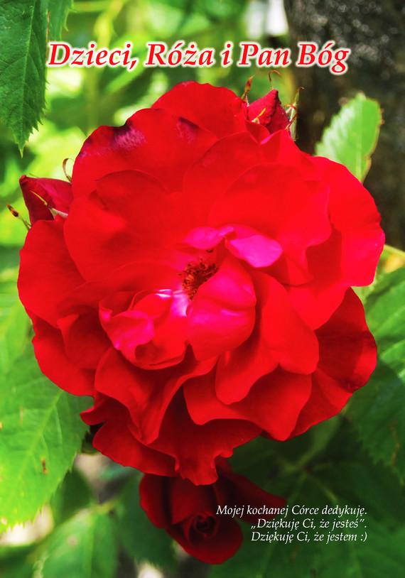 okładka Dzieci, Róża i Pan Bógebook | epub, mobi | Zygmunt Bołoz