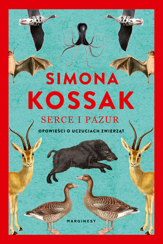 okładka Serce i pazurebook   epub, mobi   Simona Kossak