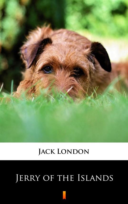okładka Jerry of the Islands, Ebook   Jack London
