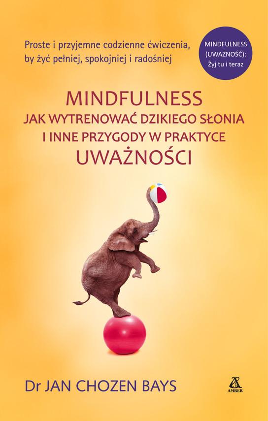 okładka Mindfulness: Jak wytrenować dzikiego słonia, Ebook | Jan Chozen Bays