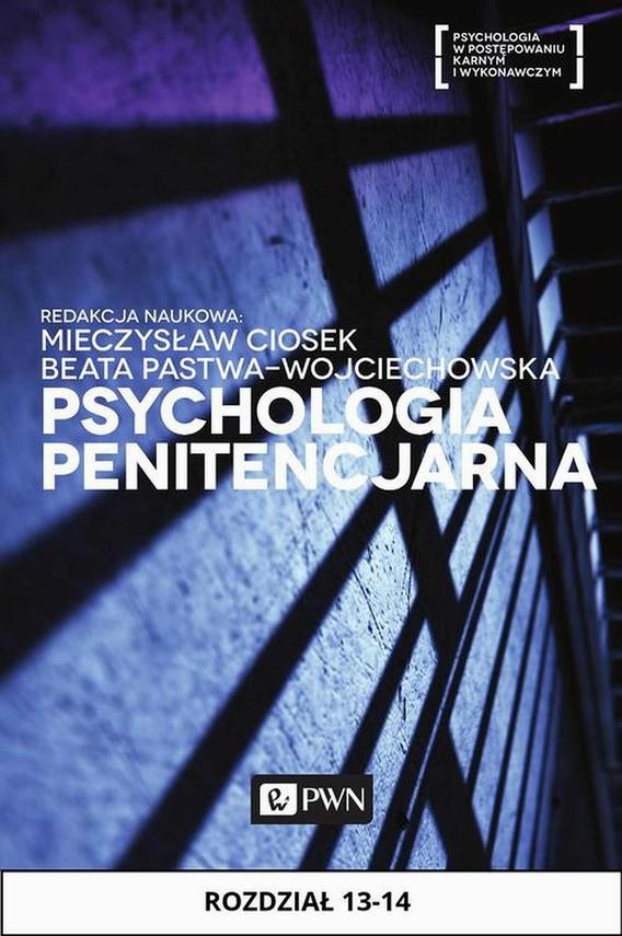 okładka Psychologia penitencjarna. Rozdział 13-14, Ebook | Henryk  Machel, Andrzej  Piotrowski, Elżbieta  Chęcińska