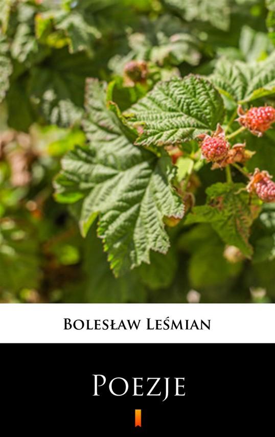 okładka Poezje, Ebook   Bolesław  Leśmian