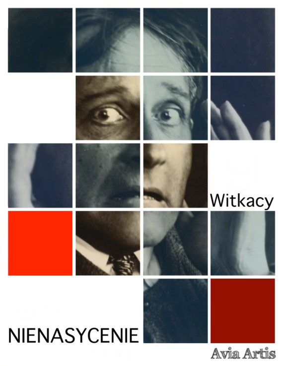 okładka Nienasycenieebook | epub, mobi | Stanisław Ignacy Witkiewicz
