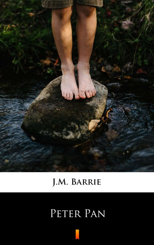 okładka Peter Panebook | epub, mobi | J.M. Barrie