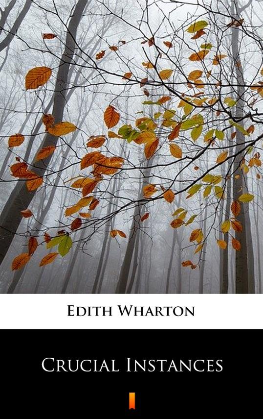 okładka Crucial Instancesebook   epub, mobi   Edith Wharton