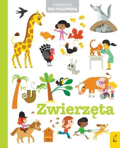 okładka Pierwsza encyklopedia Zwierzęta, Książka |
