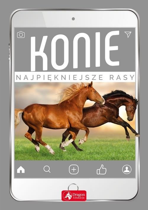 okładka Konie Najpiękniejsze rasy, Książka | Piechocka Katarzyna