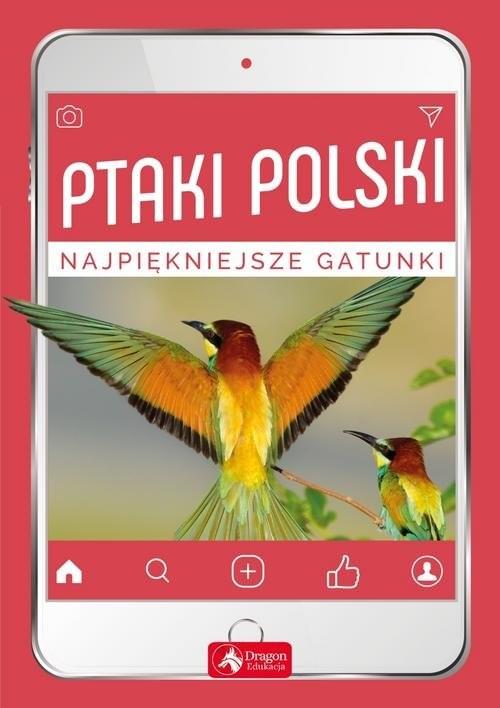 okładka Ptaki Polski, Książka | Anna Przybyłowicz, Łukasz Przybyłowicz